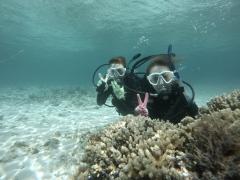 9/23西表島バラス島体験ダイビングツアー2