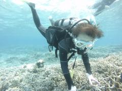 3/28西表島バラス島体験ダイビングツアー43