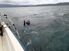 9/23西表島バラス島スノーケリング(シュノーケリング)ツアー3