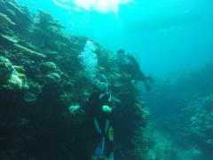 9/9西表島バラス島体験ダイビングツアー24