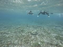 3/28西表島バラス島体験ダイビングツアー44
