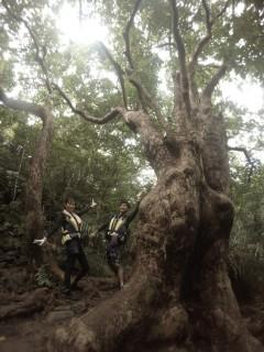 9/7西表島ピナイサーラの滝半日カヌー(カヤック)ツアー45