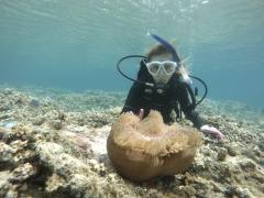 9/23西表島バラス島体験ダイビングツアー15