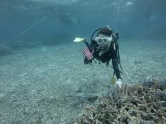 3/28西表島バラス島体験ダイビングツアー15