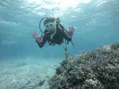 3/28西表島バラス島体験ダイビングツアー16