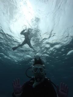 3/28西表島バラス島体験ダイビングツアー26