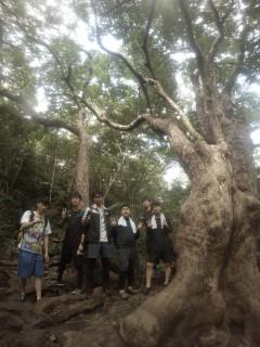 12/4西表島ピナイサーラの滝半日カヌー(カヤック)ツアー27