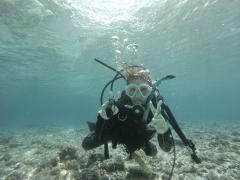 9/23西表島バラス島体験ダイビングツアー10