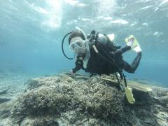 3/28西表島バラス島体験ダイビングツアー20